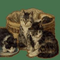 vintage chat cats vintage