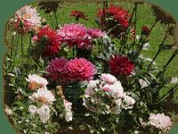 flowers deco fleurs