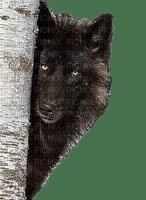 Wolf.Loup.Lobo:Victoriabea