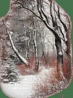 winter paysage