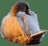 Kaz_Creations  Deco Swans Swan