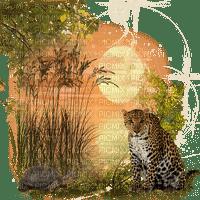 leopard bp