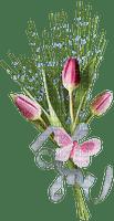 patymirabelle tulipes