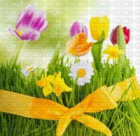 image encre couleur effet texture fleurs tulipes printemps paysage mariage anniversaire  edited by me