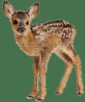 reh deer cerf