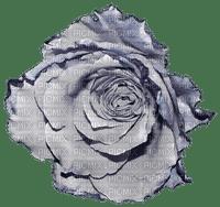 Fleur.Flower.vintage.Gris.gray.Victoriabea