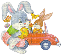 easter ostern Pâques paques deco tube bunny hase lapin animal  egg car auto
