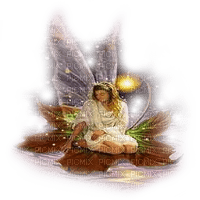 fairy on lily pad fantasy