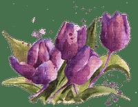 Aquarelle.Tulips.Watercolor.Purple.Victoriabea