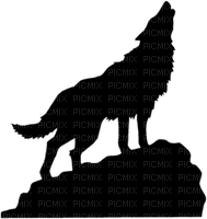 wolf silhouette loup