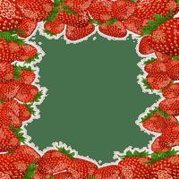 strawberry frame summer fruits cadre fraise