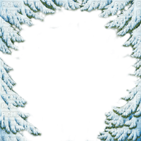 hiver pin arbre cadre winter pine tree frame snow