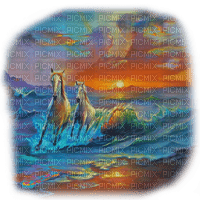 horses ocean sunset