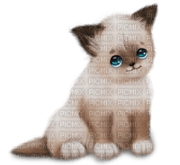 image chat