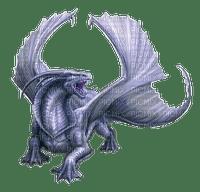 dragon (
