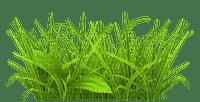 GRASS BORDER DECO