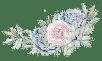 succulents  Bb2