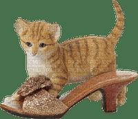 Kathleen Reynolds Cat Kitten In Shoe