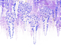 flowers  Bb2