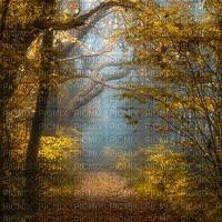 forest autumn bg forêt fond automne