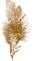 plume dorée.Cheyenne63