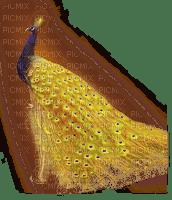 paon jaune et bleue
