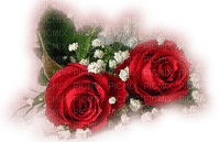 red roses deco rouge rose