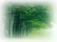 Kaz_Creations Paysage Scenery Green Trees