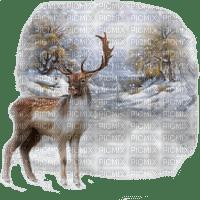 deer winter hiver cerf