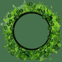 frame green circle decoration Plants cadre cercle vert décoration plantes