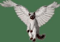 cat angel,ange chat