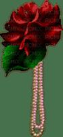 roses/pearls bp