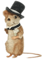 wedding mouse groom