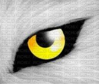 oeil loup
