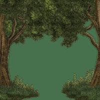 arbre décoration cadre decoration smiraikun smkstan6 smkstanarbre smiraikuncadre foret