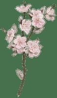 Fleurs.Flower.Pink.Deco.Victoriabea