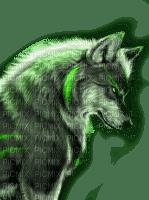 wolf green loup vert