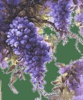 blommor--flowers--lila--purple