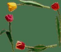 loly33 frame tulipe