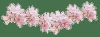 Fleurs.Flowers.Pink.Deco.Victoriabea