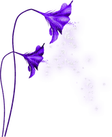 flower purple fantasy  fleur violet