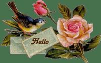 Image oiseau et rose