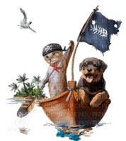 cat pirate chat
