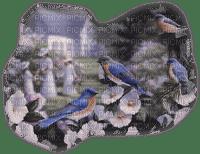 Kaz_Creations Animals Animal Bird Birds Woman Femme Friends Paysage Scenery