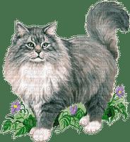 dolceluna spring cat vintage deco flowers