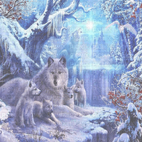 wolf bg painting  transparent loup fond
