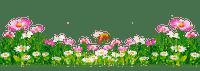 flowers border fleurs