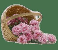 Rosen roses fleur
