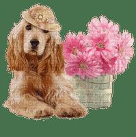 Chien.Dog.Perro.Fleurs.Victoriabea