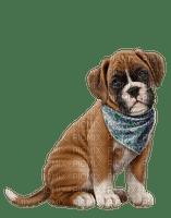 Kaz_Creations Dogs Dog Pup 🐶